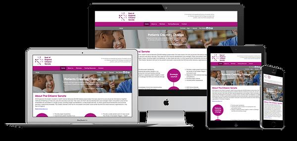 EOE Citizens Senate Website Design